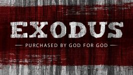 Exodus: Purchased by God for God